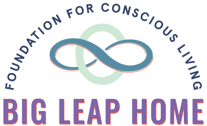 Big Leap Home logo