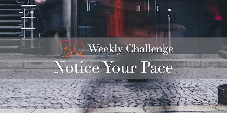 Notice Your Pace_FI